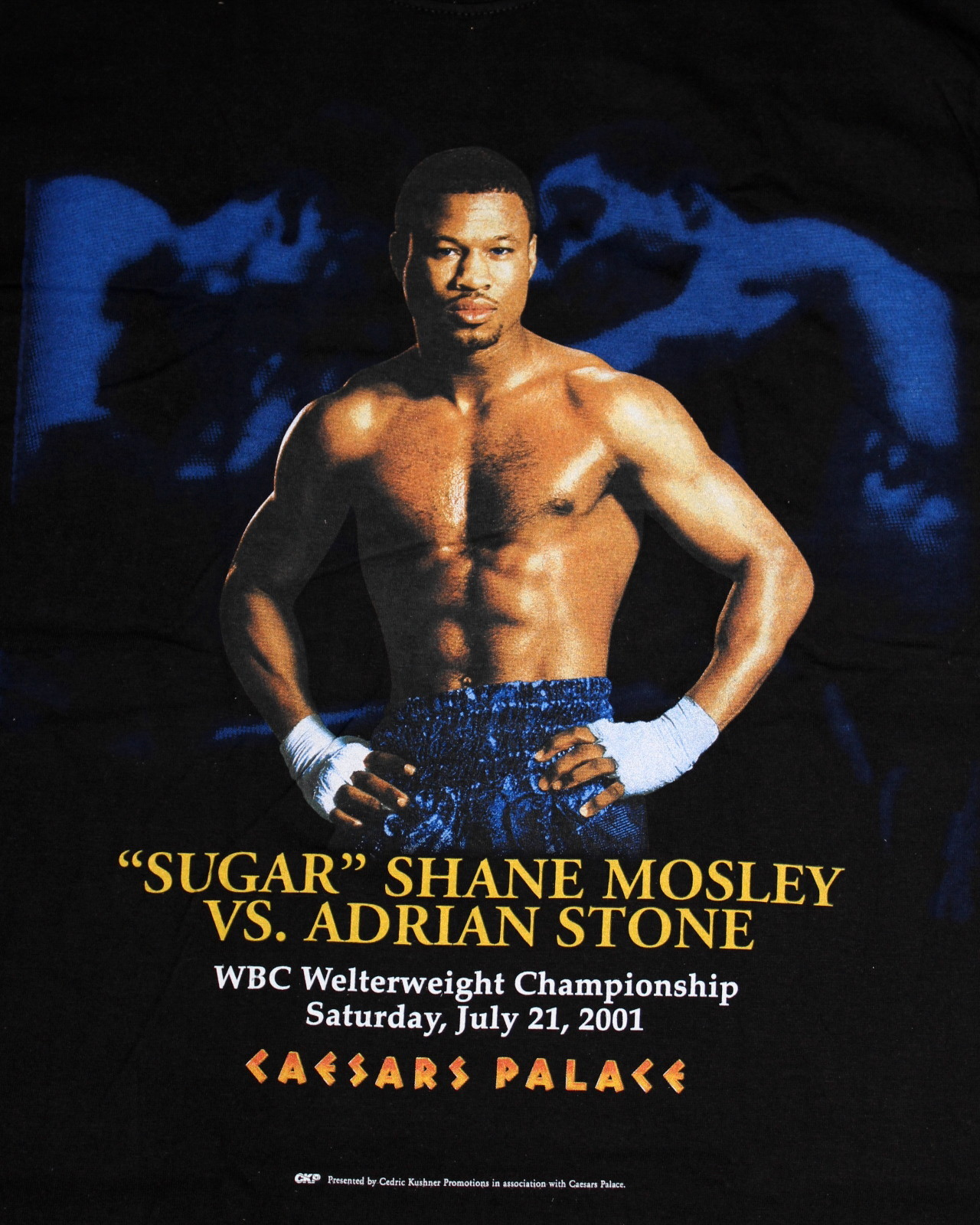 Julio Cesar Chavez furthermore 52031370 further Sugar Mosley vs Cano el 18 5 en Canc n likewise Best Boxers Of All Time From California additionally Pacquiao Mayweatherfight yolasite. on oscar de la hoya vs sugar shane mosley