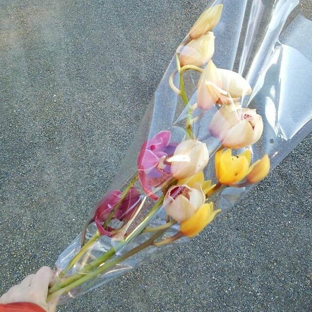 ■【訳あり】シンビMIXのミニ花束■