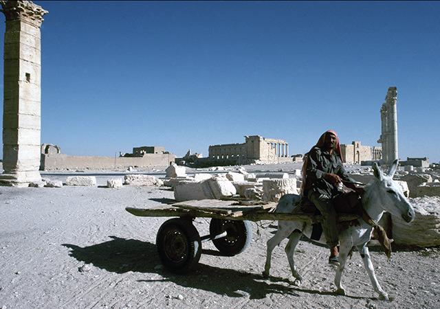 フォトライブラリOLDDAYS「シリアのパルミラ遺跡 その4」