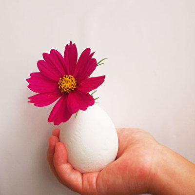 卵の殻を剥いたらセメント卵!? 殻をぴりぴり剥く感覚がたのしめるワークショップです。