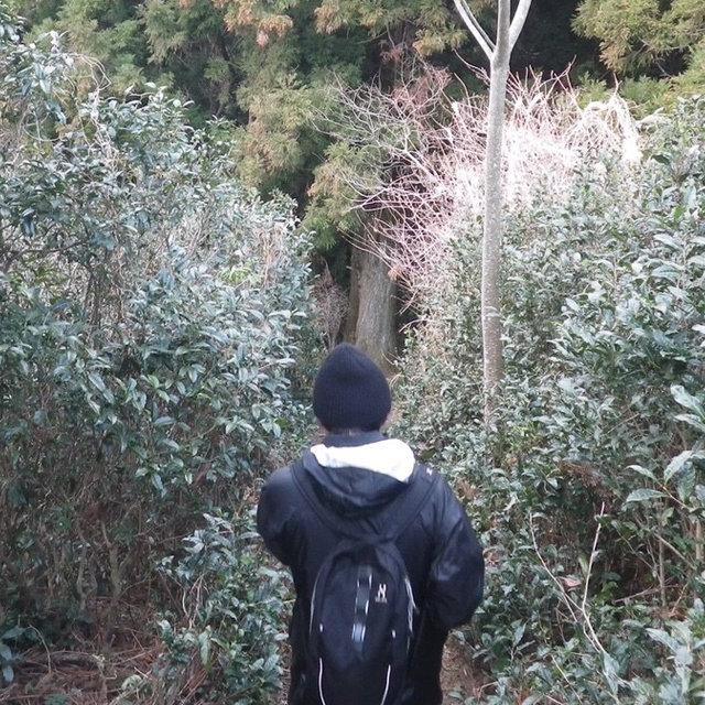 ウールの帽子がアウトドアに具合が良い。と評判なので、実際に被って山に登ってきました。