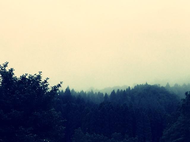 長雨にふさわしい風景