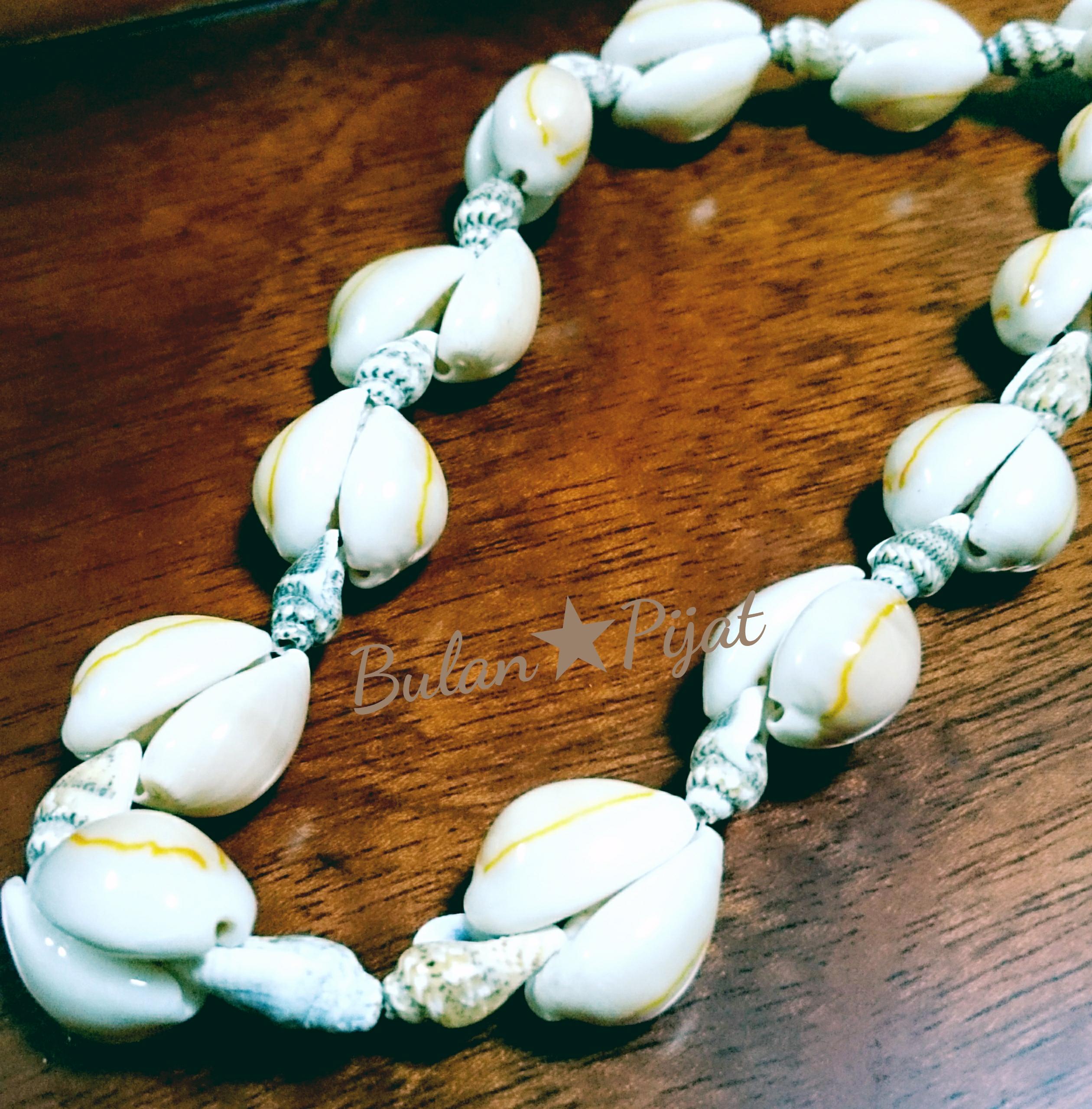 Hawaiiハワイからの贈り物 貝殻アクセサリー