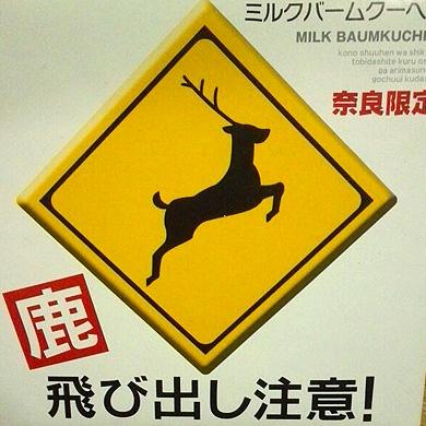 鹿 飛び出し注意!