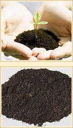 成分 フムスエキス(天然土壌エキス) について・・・