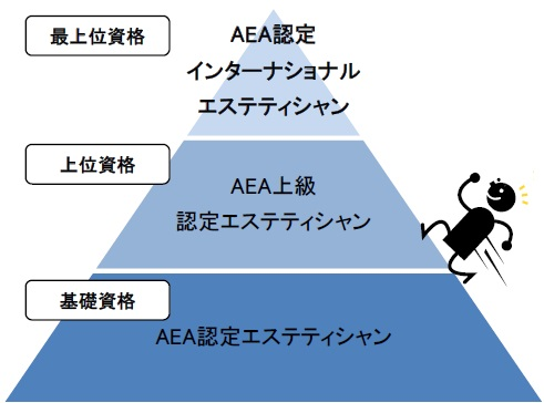 AEAエステティシャン資格
