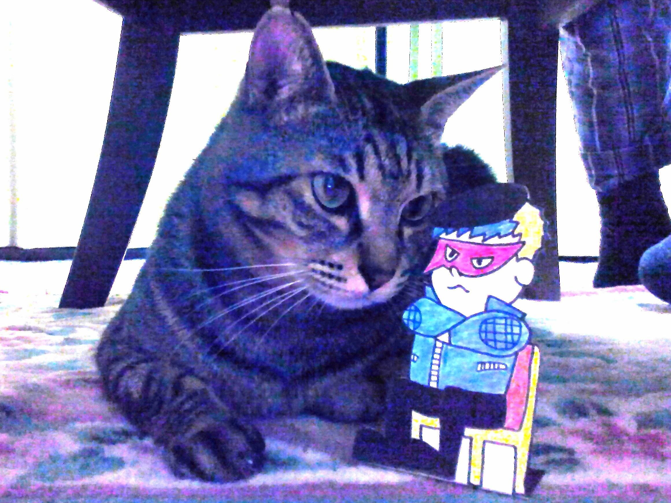 愛猫のギィーさんと、私ブルー。