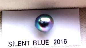 サイレントブルー2016 製品紹介