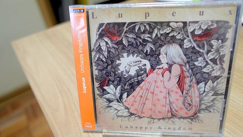 エレクトロニカやインストゥルメンタル系のCDをたくさん販売しています!