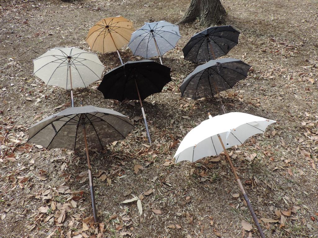 今年の日傘が出来ました