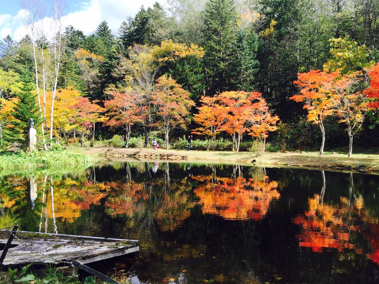 北海道・十勝の秋をちょっぴりご報告♪