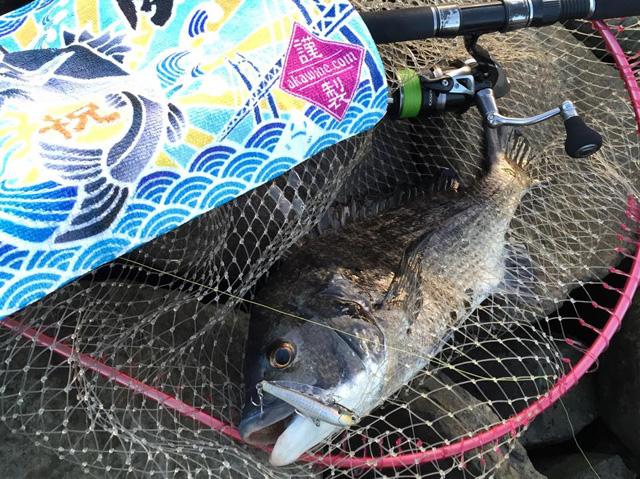 「大漁旗タオル」で釣れた喜びが倍増!