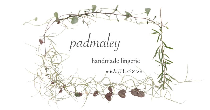 Padmaley ∞ふんどしパンツ∞